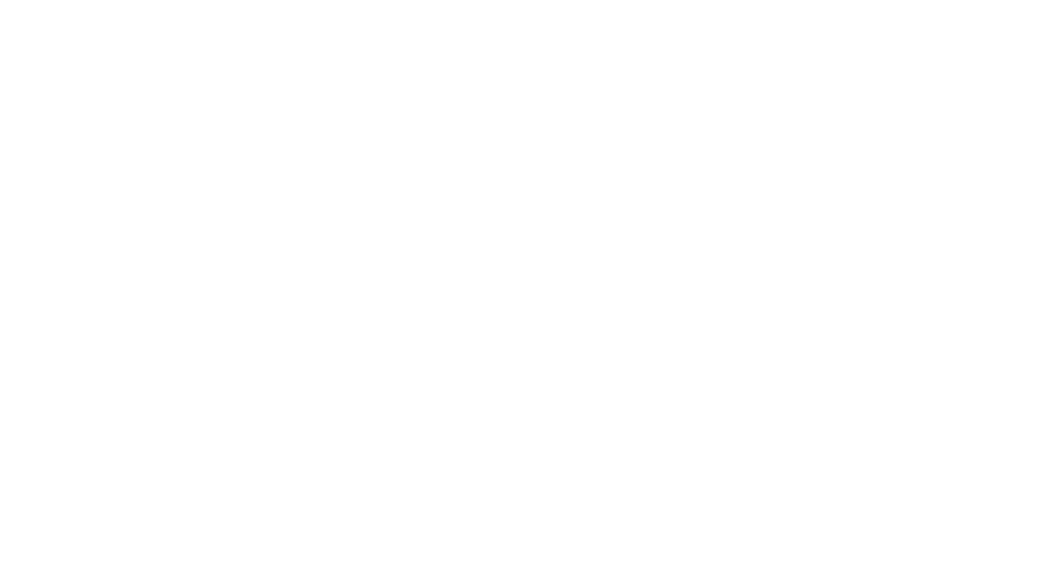 MCX SCREENMAKERS 2021 SHIFTS 100% ONLINE AND EXPANDS OPPORTUNITIES FOR EMERGING SCREENMAKERS NATIONALLY.